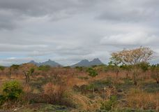 Mauritius landscape 1. Mauritius landscape taken near Albion town Royalty Free Stock Photo