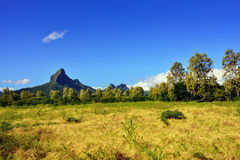 Mauritius landscape Royalty Free Stock Photo