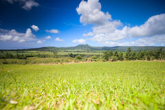 Mauritius-Landschaft Stockfotos