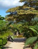 Mauritius.Park-zon Le Domaine Les Pailles upp i en solig dag Arkivbild