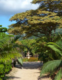 Mauritius.Park zone Le Domaine Les Pailles up in a sunny day Stock Photography
