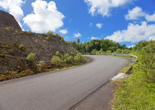 Mauritius. The road at the hill and tropical plants stock image
