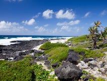 Mauritius. Steenachtig landschap van het eiland. Overzees tropisch landschap in een zonnige dag royalty-vrije stock foto's