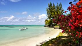 Mauritius Tropical Island, West Coast, Indian Ocean royalty free stock images