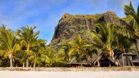 Mauritius Volcanic Landscape Mountains arkivfoton