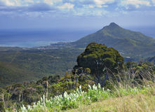 Mauritius. Wood and mountains Royalty Free Stock Photo
