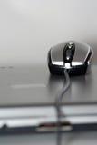 Maus auf einem silbernen Laptop Stockbilder
