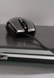Maus auf einem silbernen Laptop Stockbild