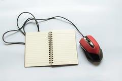 Maus mit Buch stockfoto