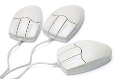 Maus mit drei Computern Lizenzfreies Stockbild