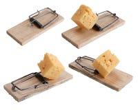 Mausefalle angelockt mit Käse Stockfotos