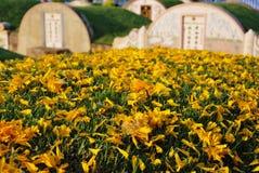 mausoleum Foto de Stock