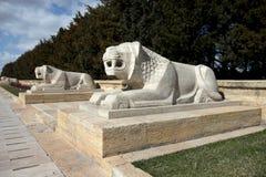 Lions i Ankara, Mausoleum av Ataturk - Turkiet royaltyfri bild