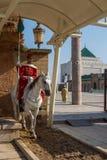 Mausoleum av Mohammed V och och Hassan II i Rabat Royaltyfri Fotografi