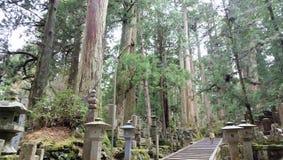 Mausoleum van Kobo Daishi in Koyasan royalty-vrije stock foto's