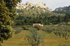 Maussane-les-Alpilles in Provenza Fotografia Stock Libera da Diritti
