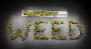 Mauvaise herbe de Word écrite avec l'usine sèche par cannabis Image stock