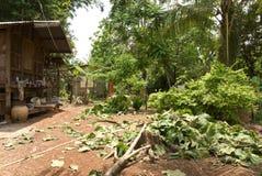 Mauvaises huttes de village Photo stock