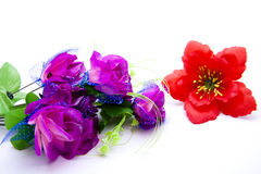 Mauve bouquet. On white background Royalty Free Stock Photography