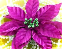 Mauve Silk цветок Стоковая Фотография RF