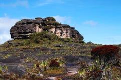 Maverick Rock - Venezuela Stock Image