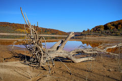 Mavrovo lake Stock Images