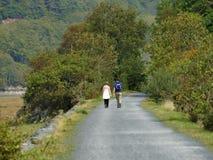 Mawddach trail wales Royalty Free Stock Image