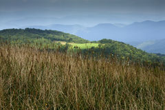 Max Patch, Appalachian Trail, Pisgah NF. Max Patch, Appalachian Trail, Pisgah National Forest, NC stock photography