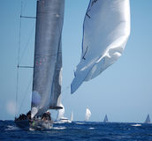 Maxi Yacht Rolex Cup Stock Images