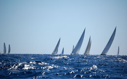 Maxi Yacht Rolex Cup Royalty Free Stock Photo