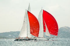 Maxi Yacht Rolex Cup editorial Imagenes de archivo