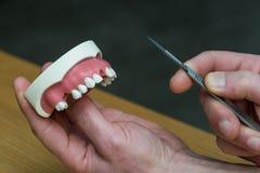 Maxillary tandläkareimplantat för silikon Arkivbild