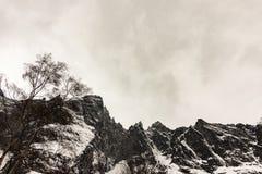 Maxima av fiska med drag iväggen, Trollveggen i Norge, vinter och snö royaltyfri bild