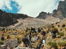 Maxima av Mount Kenya Arkivbilder
