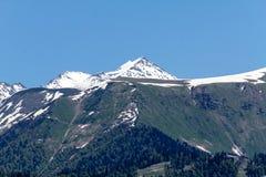 maxima för caucasus dombay bergberg Royaltyfria Foton
