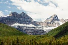 Maxima för stenigt berg som står högt över vintergrön skog Arkivfoton
