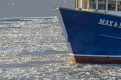 Maximal fiskeskyttel & Emma i iskall hamn Arkivfoton