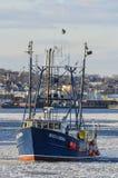 Maximal fiskeskyttel & Emma i iskall hamn Arkivbild
