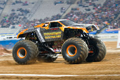Maximum Destruction Monster Truck. BARCELONA, SPAIN - NOVEMBER 12: Tom Meents driving the Maximum Destruction Monster Truck during a Monster Jam spectacle, on Stock Image