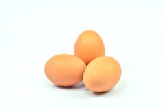 The maximum number of eggs white background. Royalty Free Stock Image