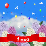 May 1 congratulatory card. Vector illustrations of May 1 congratulatory card with red ribbon, lilacs branches on sky background stock illustration