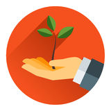 Mały drzewo w ręce Fotografia Stock