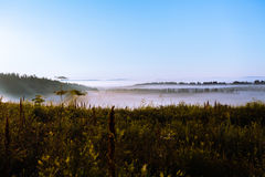 The May field in the sun and the fog stock photography