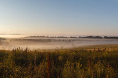 The May field in the sun and the fog royalty free stock photo