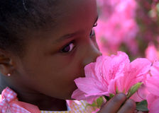 May flowers. A gorgeous young african girl smells the pretty flowers Royalty Free Stock Photos