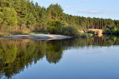 May forest landscape of the river. Stock Photos