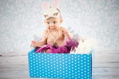 Mały królik w pudełku Fotografia Royalty Free