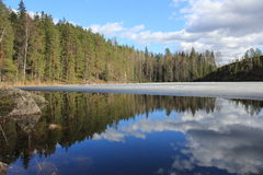 The May lake in Karelia. Lake coast. which is covered with ice, Karelia, Russia Stock Photos