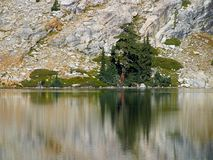 May Lake Reflections Stock Photography