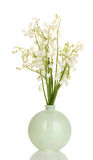 May-lilies in vase Stock Photo